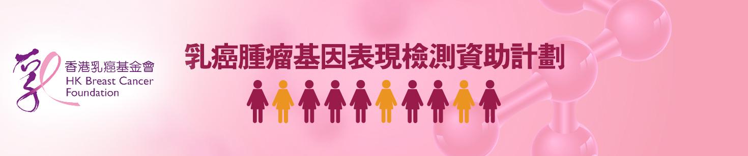 乳癌治療費用資助計劃